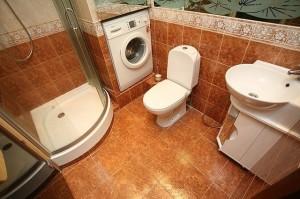 Туалет с душевой кабиной